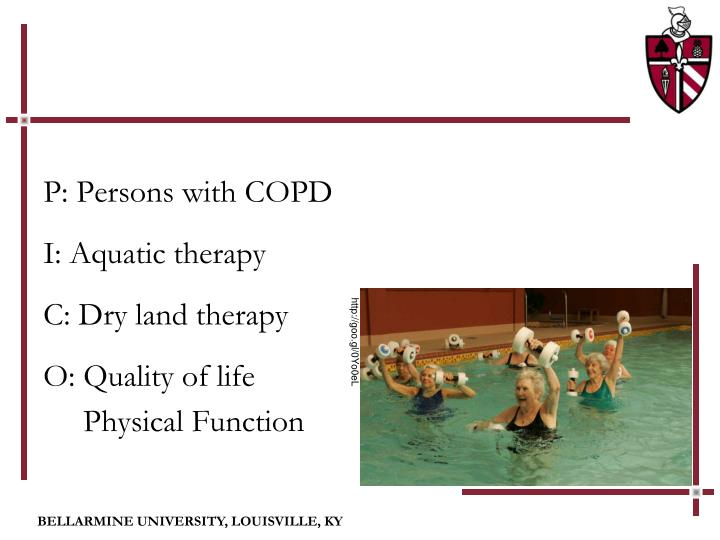 P: Persons with COPD