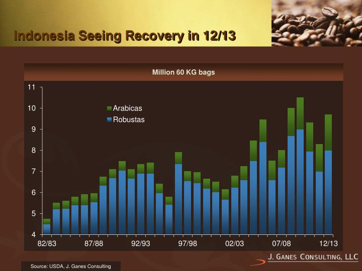 Indonesia Seeing Recovery in 12/13
