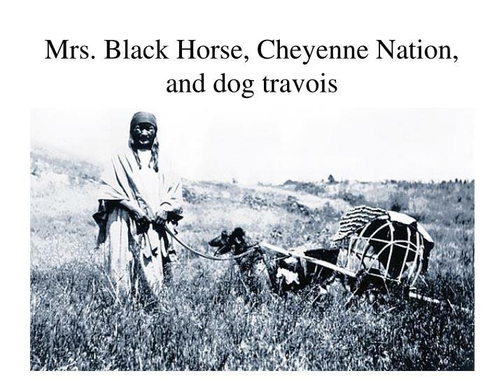 Mrs. Black Horse, Cheyenne Nation, and dog travois