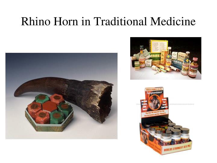 Rhino Horn in Traditional Medicine