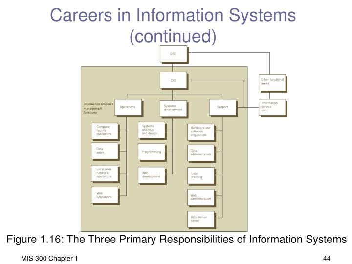 Careers in Information Systems (continued)
