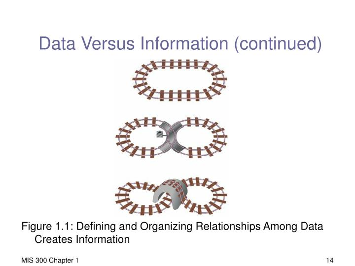 Data Versus Information (continued)