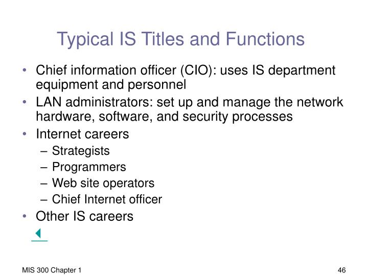 Typical IS Titles and Functions