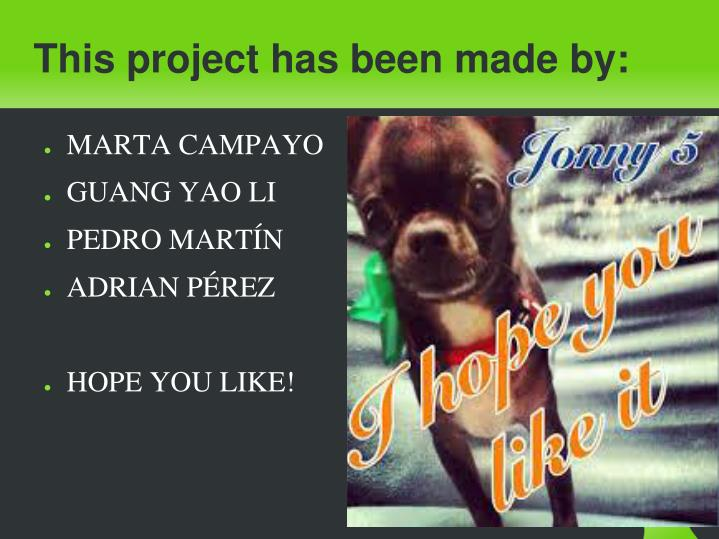This project has been made by: