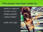 this project has been made by