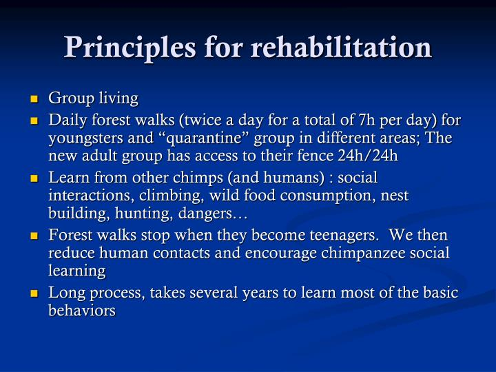 Principles for rehabilitation