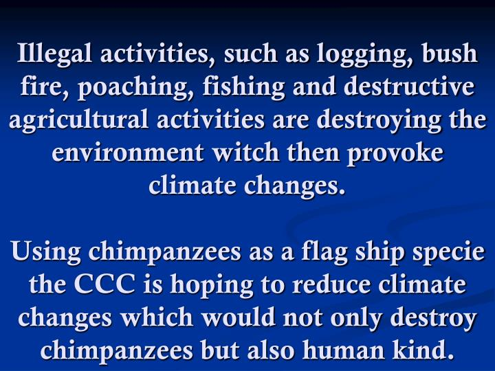 Illegal activities, such as logging, bush fire, poaching, fishing and destructive agricultural activities are destroying the environment witch then provoke climate changes.