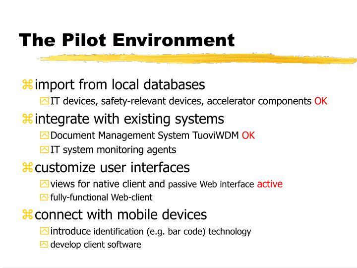 The Pilot Environment