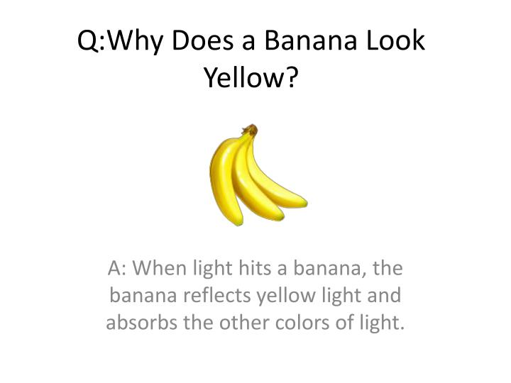 Q:Why Does a Banana Look Yellow?