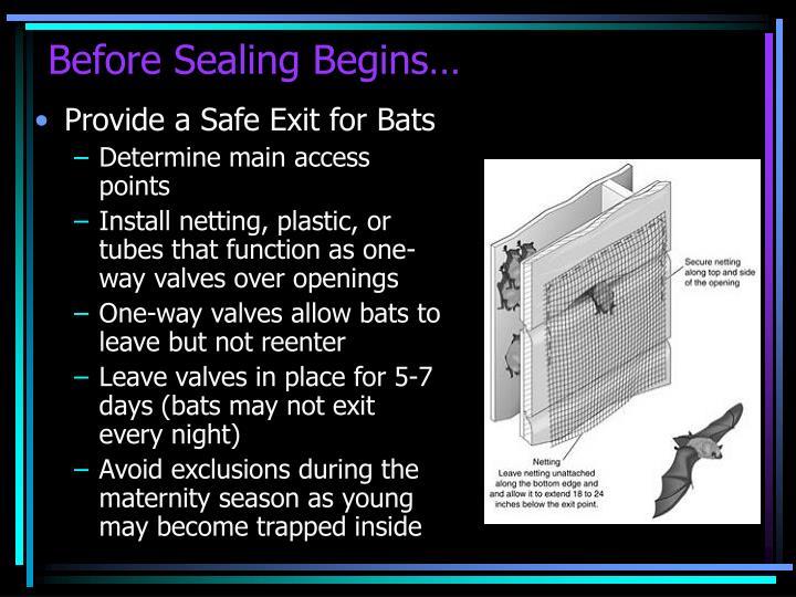 Before Sealing Begins…