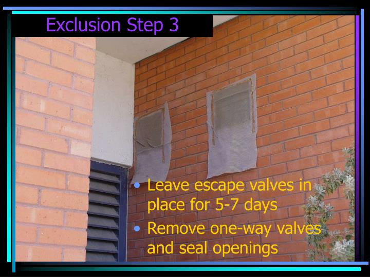 Exclusion Step 3