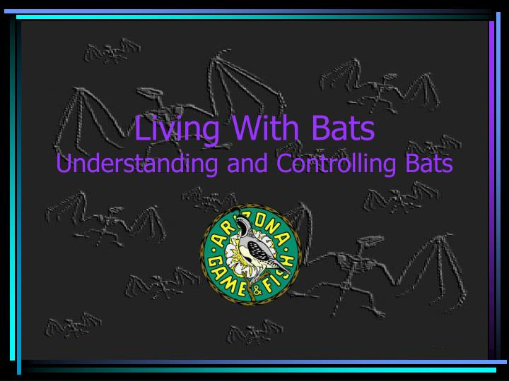 Living With Bats