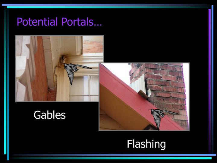 Potential Portals…