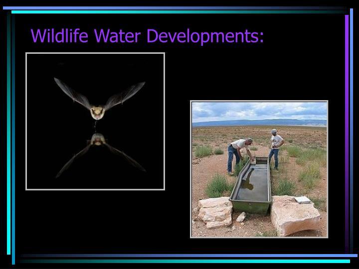 Wildlife Water Developments: