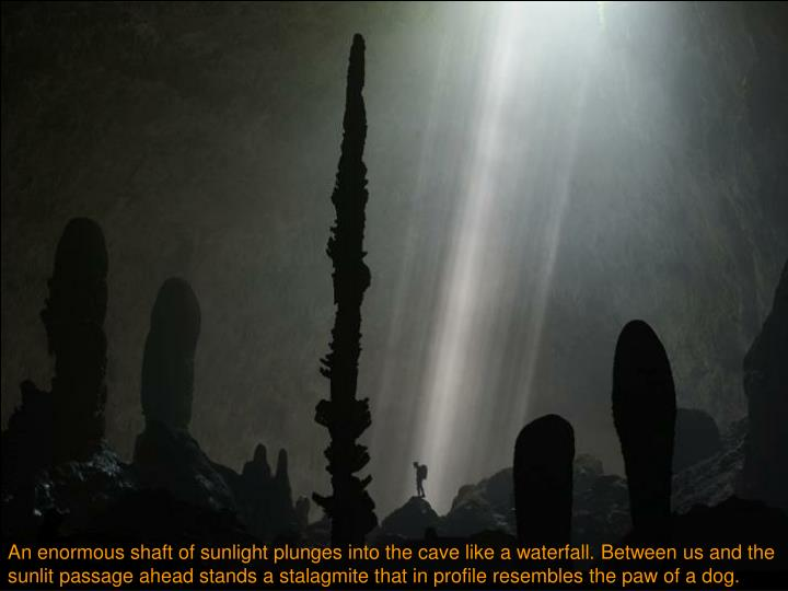 An enormous shaft of sunlight plunges into the cave like a waterfall. Between us and the sunlit passage ahead stands a stalagmite that in profile resembles