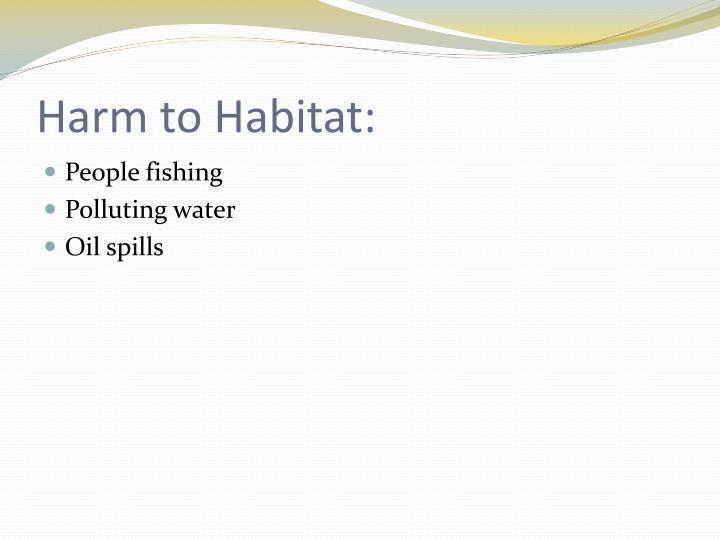 Harm to Habitat: