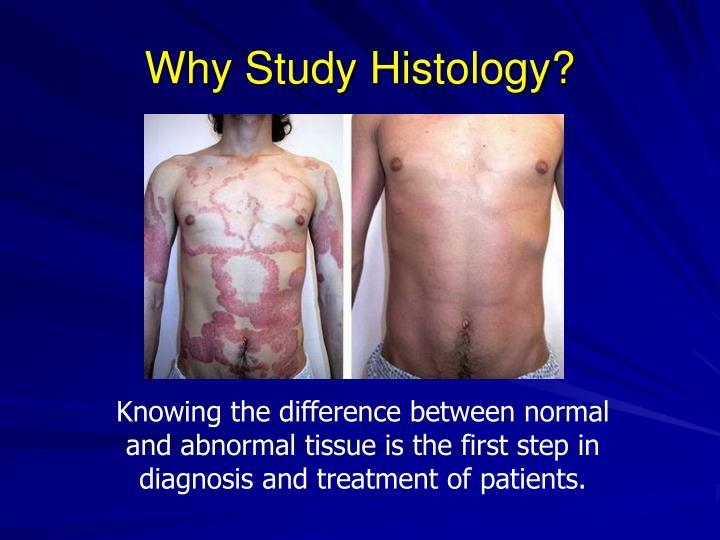 Why Study Histology?