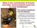 what is the contribution of forests and other environmental resources to rural livelihoods