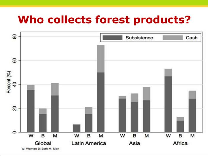 Who collects forest products?