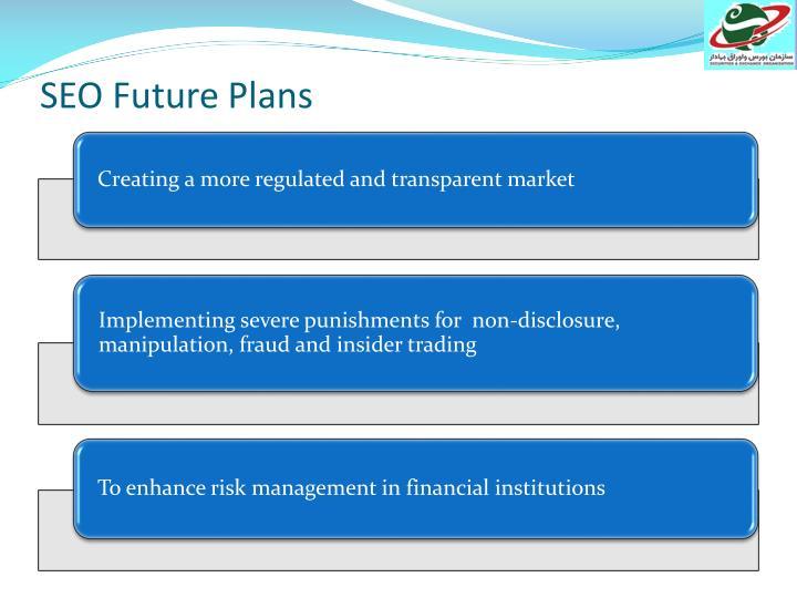 SEO Future Plans