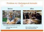 problem 2 endangered animals