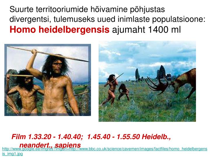 Suurte territooriumide hõivamine põhjustas divergentsi, tulemuseks uued inimlaste populatsioone: