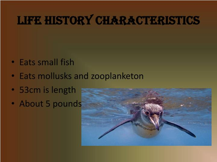 Life History Characteristics