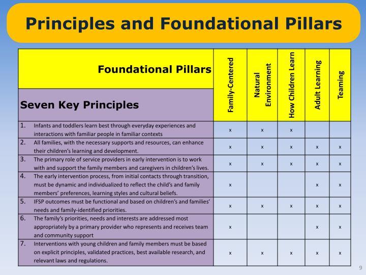 Principles and Foundational Pillars