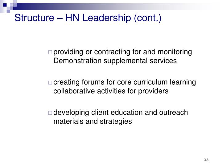 Structure – HN Leadership (cont.)