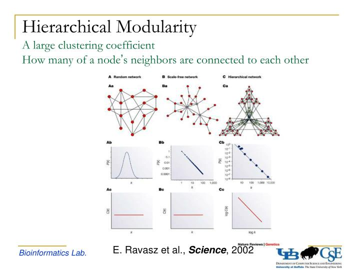 Hierarchical Modularity