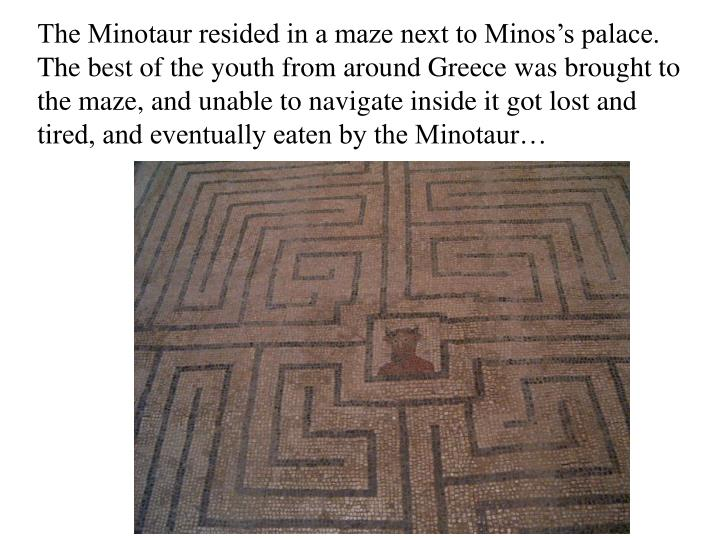 The Minotaur resided in a maze next to Minos's palace. The best of the youth from around Greece was brought to the maze, and unable to navigate inside it got lost and tired, and eventually eaten by the Minotaur…
