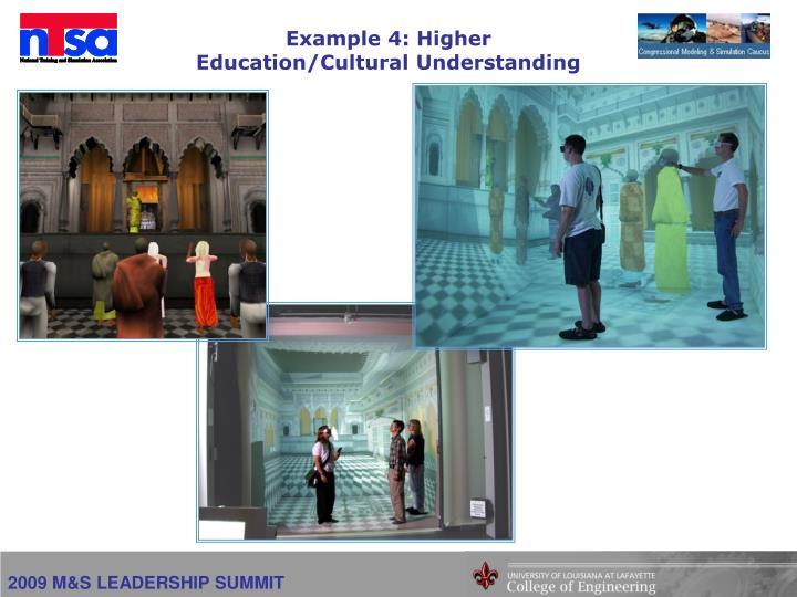 Example 4: Higher Education/Cultural Understanding