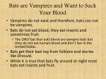 bats are vampires and want to suck your blood