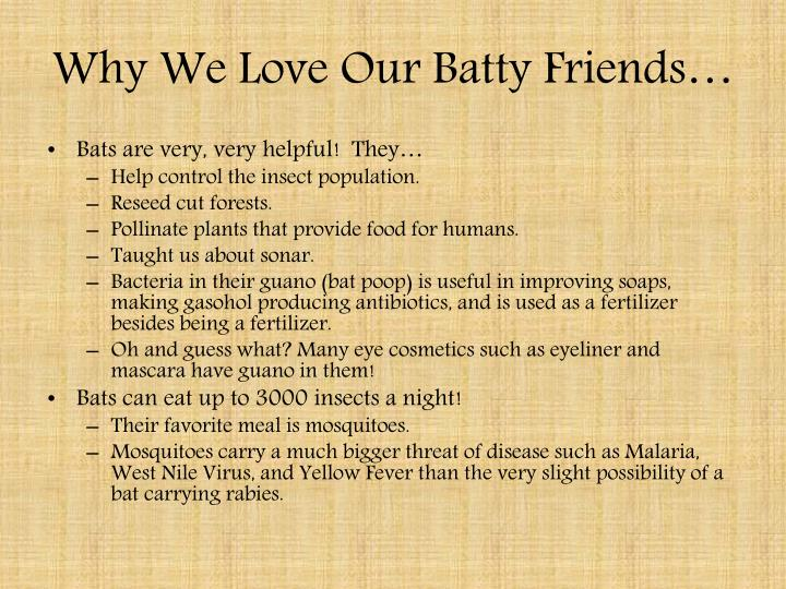 Why We Love Our Batty Friends…