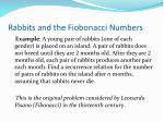 rabbits and the fiobonacci numbers