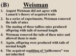 b weisman