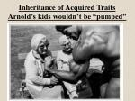 inheritance of acquired traits arnold s kids wouldn t be pumped