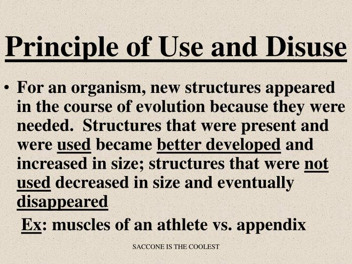 Principle of Use and Disuse