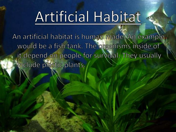 Artificial Habitat