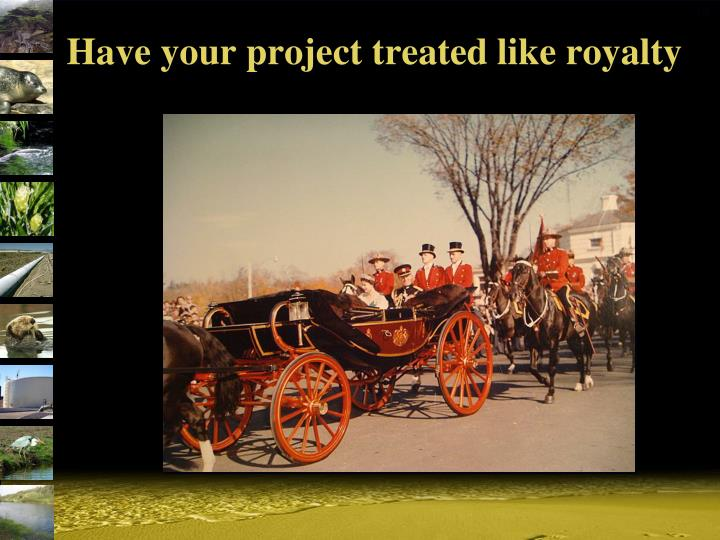 Have your project treated like royalty