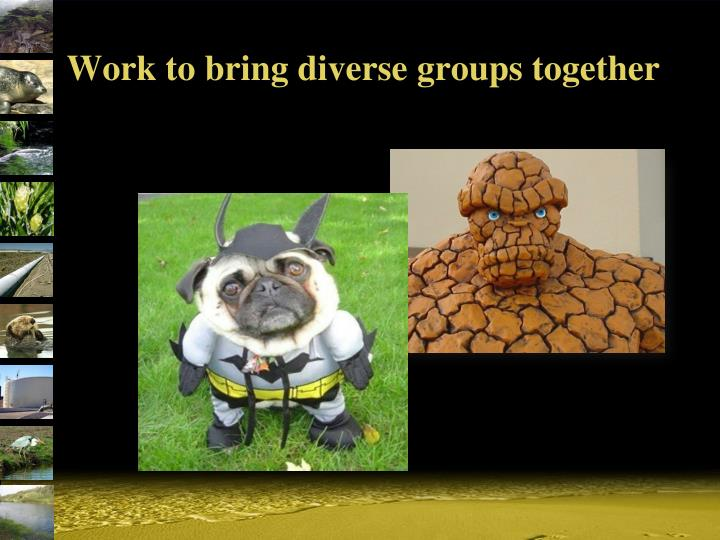 Work to bring diverse groups together