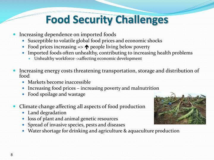Food Security Challenges