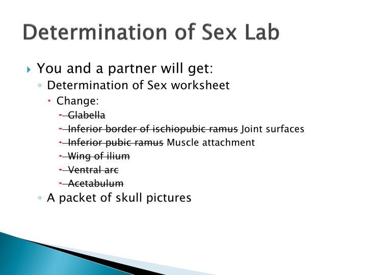 Determination of Sex Lab