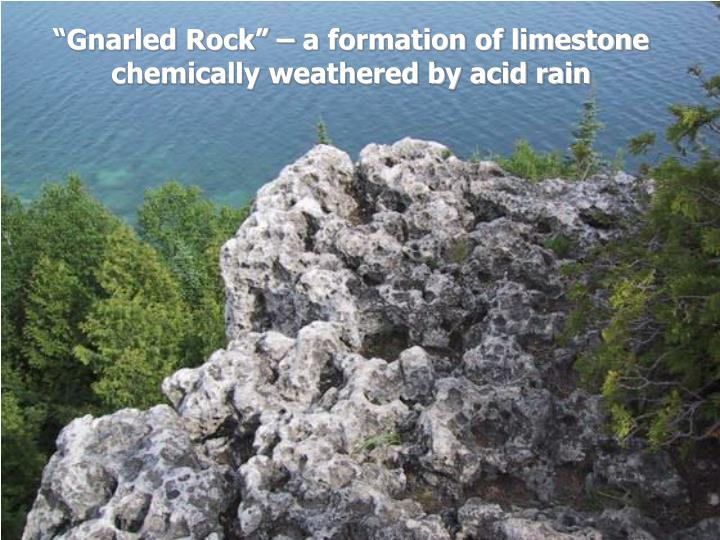 """""""Gnarled Rock"""" – a formation of limestone chemically weathered by acid rain"""