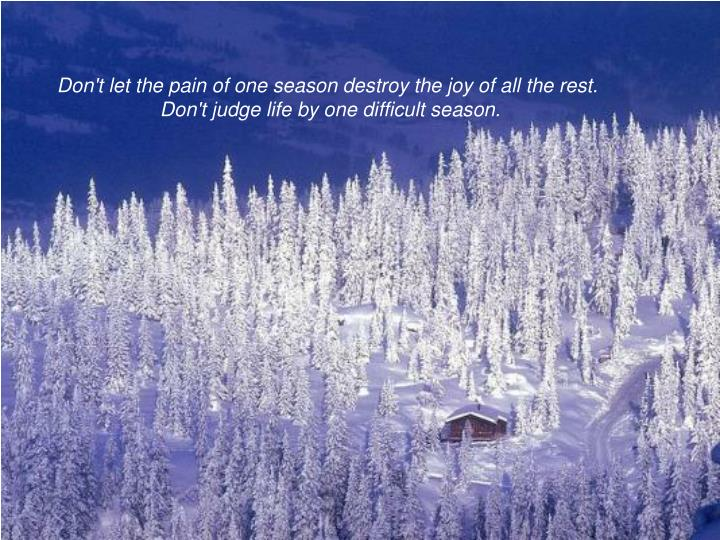 Don't let the pain of one season destroy the joy of all the rest.