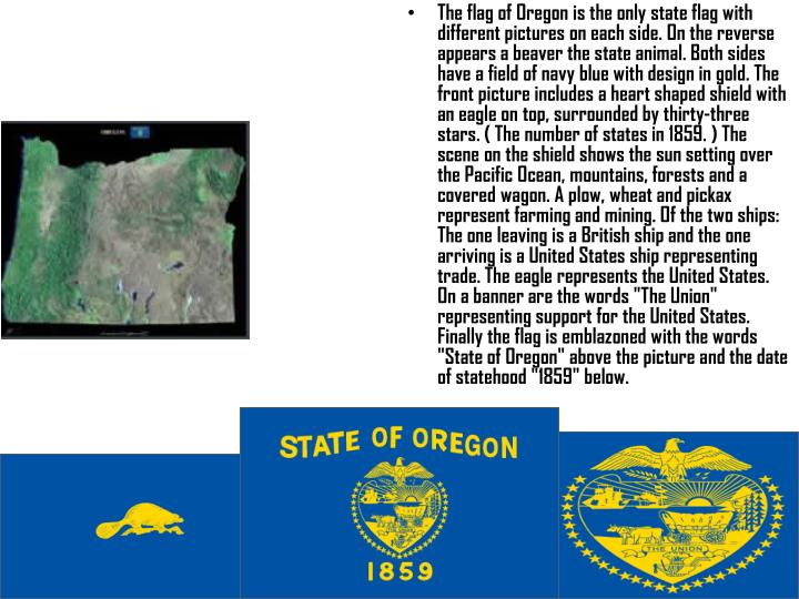"""The flag of Oregon is the only state flag with different pictures on each side. On the reverse appears a beaver the state animal. Both sides have a field of navy blue with design in gold. The front picture includes a heart shaped shield with an eagle on top, surrounded by thirty-three stars. ( The number of states in 1859. ) The scene on the shield shows the sun setting over the Pacific Ocean, mountains, forests and a covered wagon. A plow, wheat and pickax represent farming and mining. Of the two ships: The one leaving is a British ship and the one arriving is a United States ship representing trade. The eagle represents the United States. On a banner are the words """"The Union"""" representing support for the United States. Finally the flag is emblazoned with the words """"State of Oregon"""" above the picture and the date of statehood """"1859"""" below."""