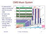 cms muon system