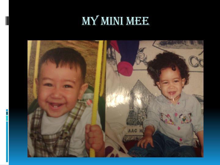 My mini