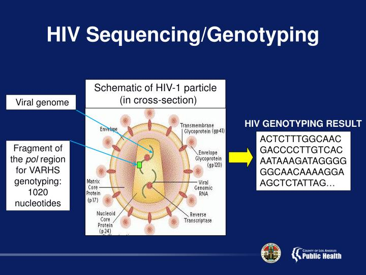 HIV Sequencing/Genotyping