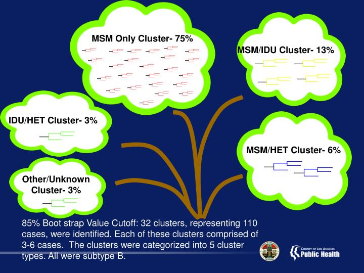 MSM Only Cluster- 75%